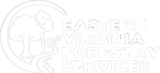 Eastern Virginia Forestry Service